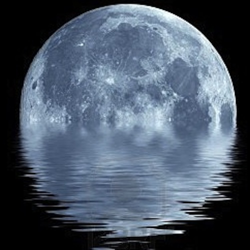 Conversations With Full Moon